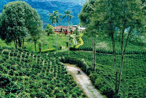 Kolumbien Reisen | Hacienda im Kaffeedreieck