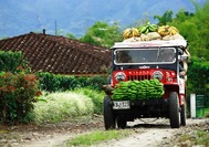 Typischer Willys Jeep im Kaffeedreieck unterwegs