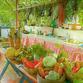 Kolumbien Reisen | Restaurant, Santa Marta