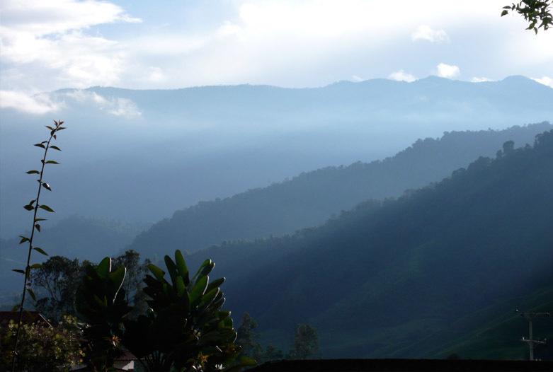 Kolumbien Reisen | Landschaft, Kaffeedreieck
